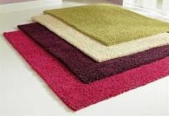 manfaat karpet bulu